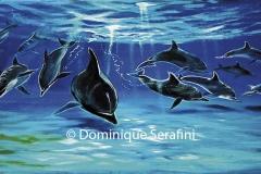 la-valse-des-dauphins_B